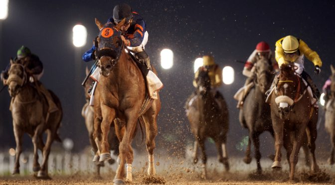 Semboules Maiden Stakes – Awt 6f 101y, 13 Runners